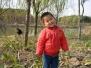 20101211_顾村公园
