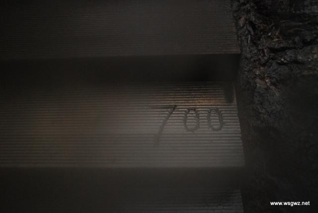 1DSC_0089